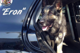 Victim spots his stolen car at Pacific View Mall–PD K9 aids in capture of suspect