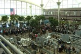 InsureMyTrip and Hopper Announce Busiest Airports This Thanksgiving