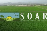 2016 Community Conversation Series The Effects of SOAR