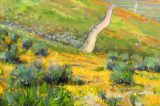 The Natural World: Variations on a Theme Featuring Paintings by Gina Niebergall