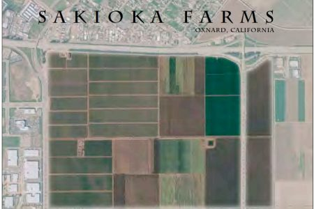 Oxnard: Sakioka Farms Business Park to bring 5,000-9,000 jobs; a Sell Job on $45 Million Sales Tax Increase and More to Finance Budget Spending