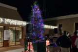 Hueneme News | HOLLY🎄DAY Tree Lighting 2019 – Video